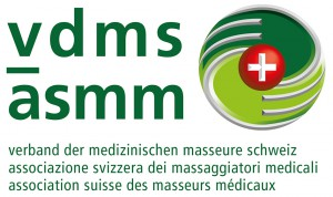 Logo_vdms